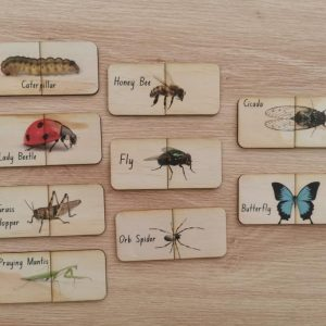 collection of 9 matching timber cards showing different bugs