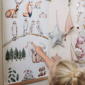 Close up of child pointing to images on woodland print hanging on wall